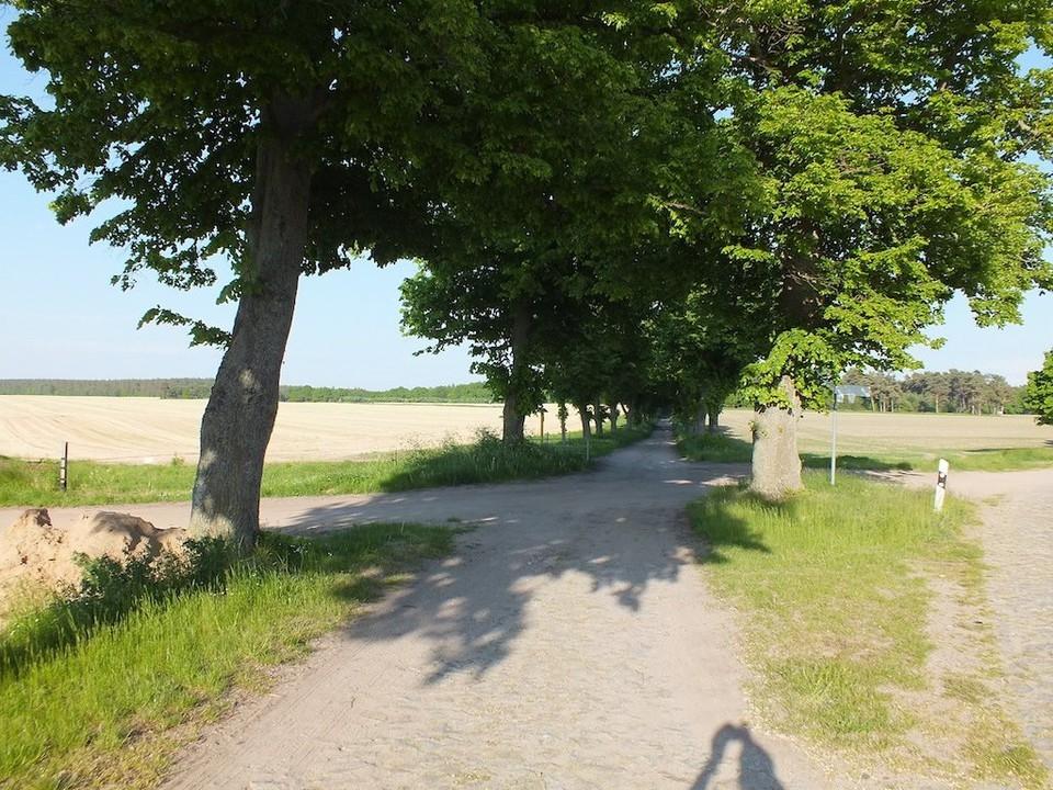 Mecklenburger Allee